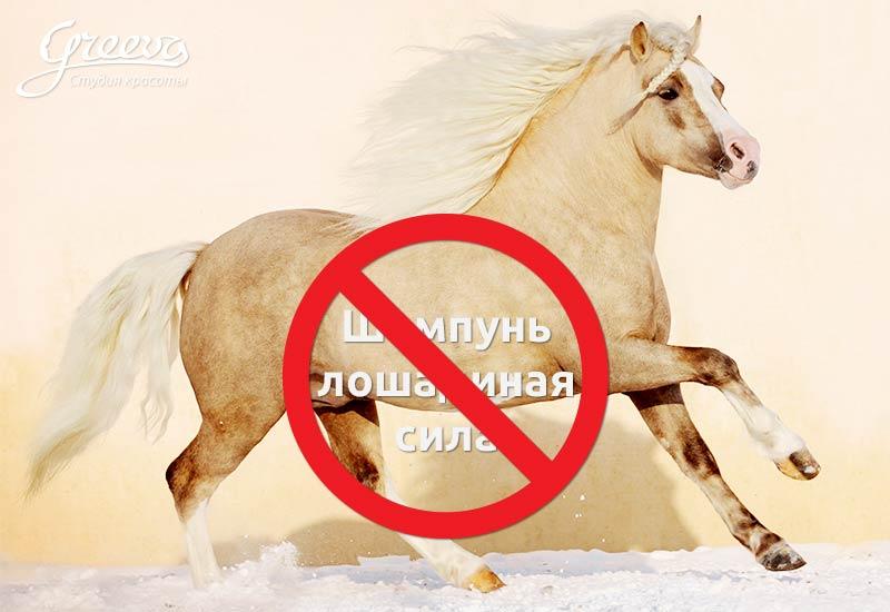 Шампунь лошадиная сила, вред и бессмысленность для ваших волос.